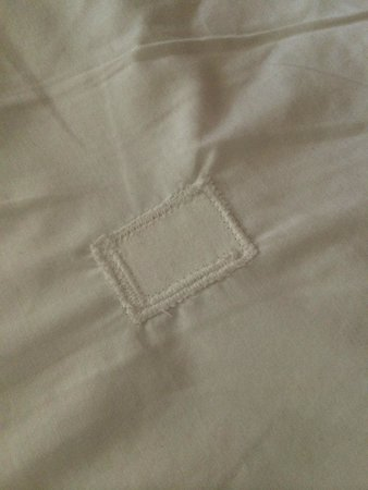 Quality Inn Downtown 4th Avenue: Bed linens are patched!