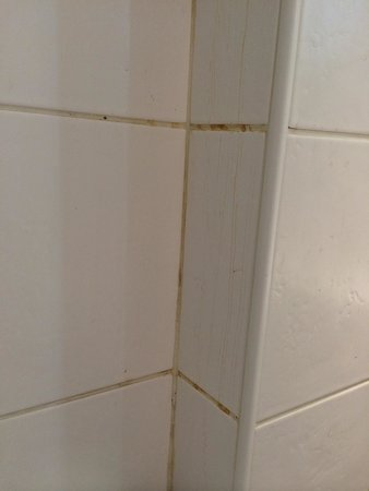 Kyriad Paris 10 - Gare Du Nord : Les joints de la salle de bain sont sales...