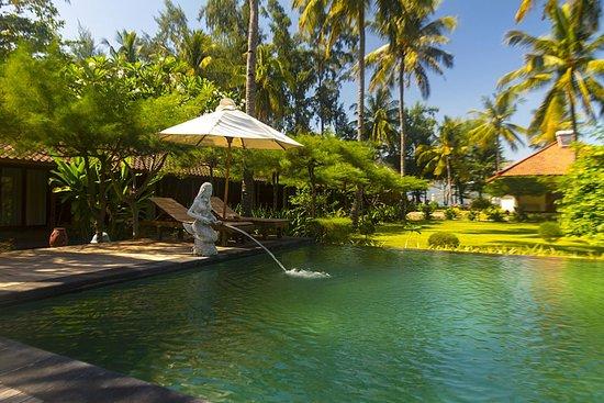 Villa Karang Hotel and Spa: Pool