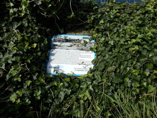 Bromore Cliffs : Plane crash memorial