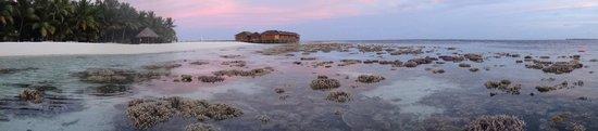 Vilamendhoo Island Resort & Spa: Low tide