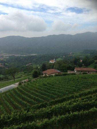 Polisena L'Altro Agriturismo : Terrasse du restaurant