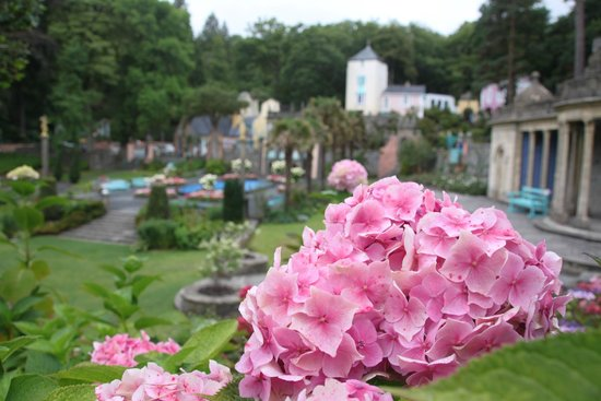 Portmeirion Village: Portmeirion August 2014