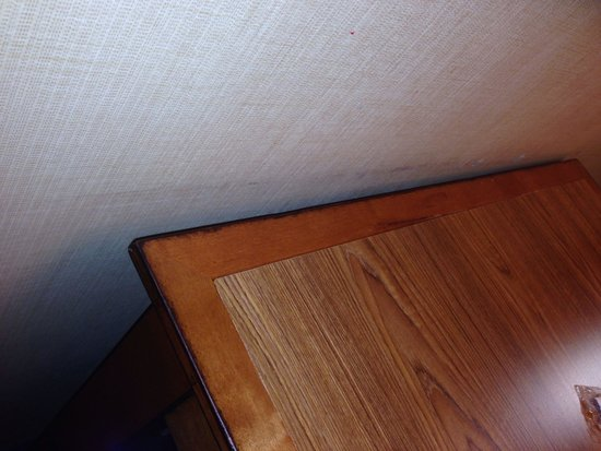 Embassy Suites by Hilton Austin - Central: Wall by the table