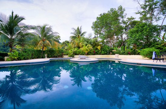 LagunaVista Villas : Pool view