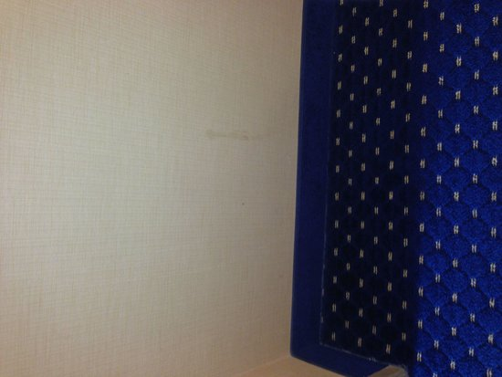 Embassy Suites by Hilton Austin - Central: Wall...