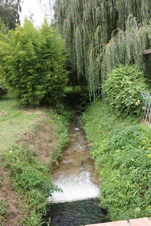 Le Moulin d'Edmond: Digne des jardins du roi !!!