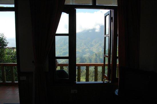 Cat Cat View Hotel: Blick aus dem Zimmerfenster