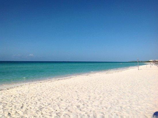 Royalton Cayo Santa Maria: Eau très chaude, plage impeccable et petits poissons bleus