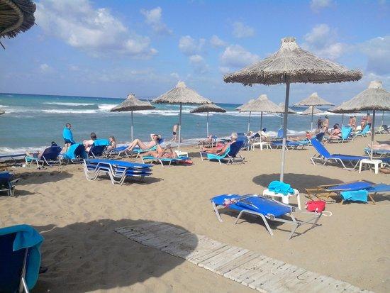 Agapi Beach Hotel: trés longue plage de sable.