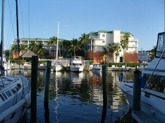 Marina Del Mar Resort And Marina : Blick auf die Marina