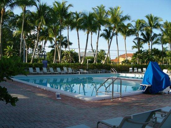 Marina Del Mar Resort And Marina : Der Pool