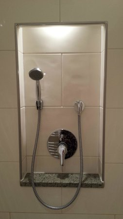 Vier Jahreszeiten am Schluchsee: Chambre avec douche