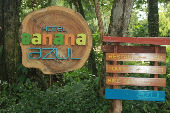 Hotel Banana Azul: Welcome (from Azul Beach Club)
