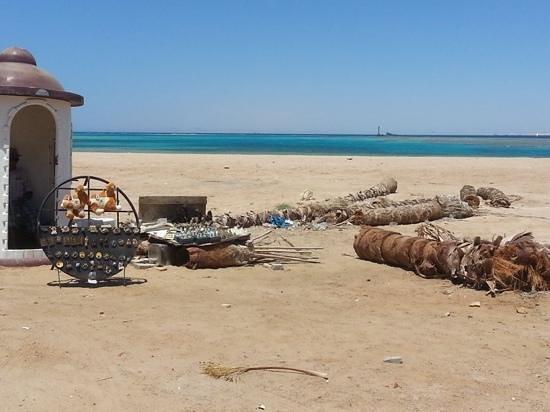 Coral Sea Sensatori - Sharm El Sheikh: the beach.. at the end of the walkway...