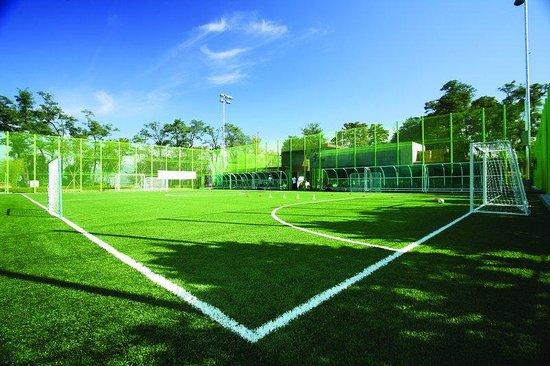Banyan Tree Club & Spa Seoul : Futsal Field