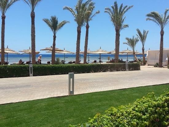 Coral Sea Sensatori - Sharm El Sheikh: view from our sunlounger...