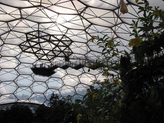 Eden Project: the highest platform