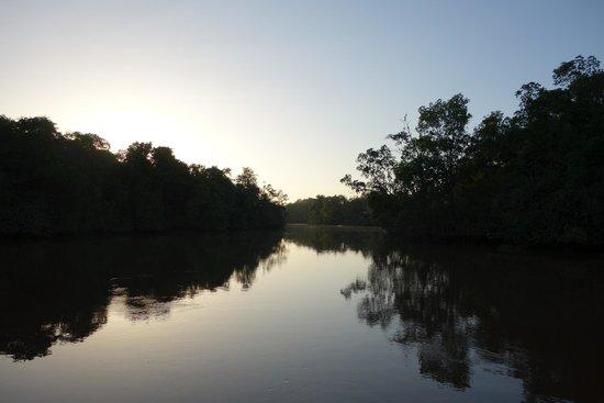 Orinoco Eco Camp: crepuscule