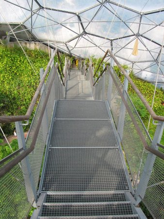 Eden Project: the steep wobbly steps