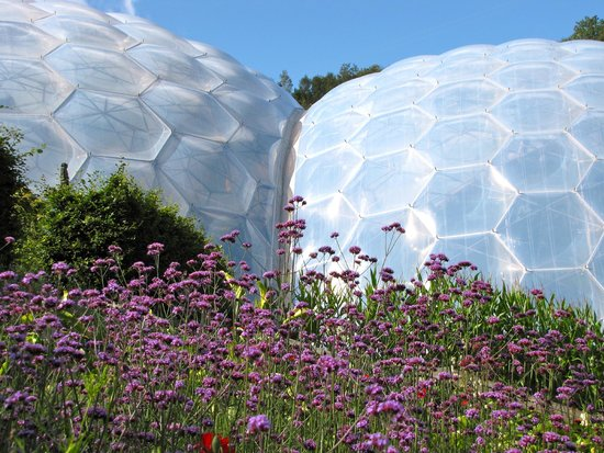 Eden Project: the biomes