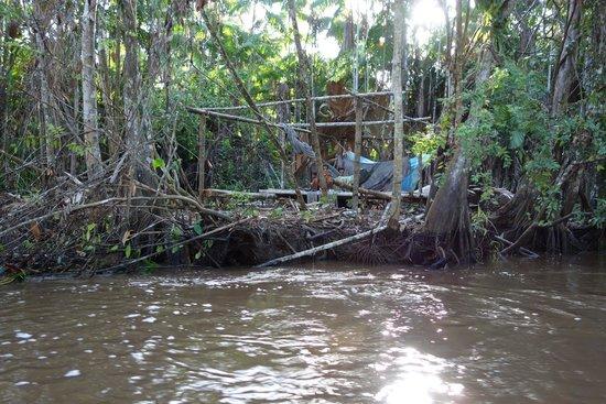 Orinoco Eco Camp: excursion - maison warao