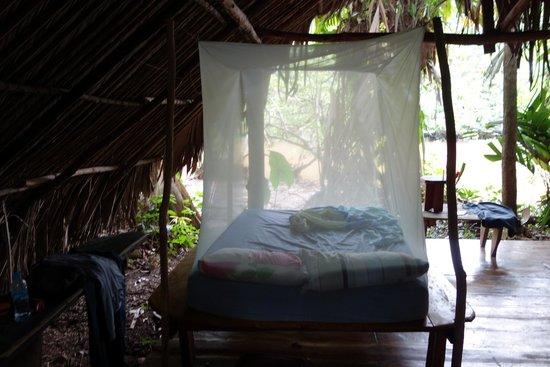 Orinoco Eco Camp: chambre