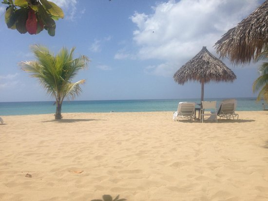Beach Jamaica Inn