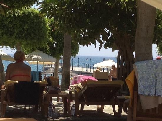 Elias Beach Hotel: lovely view