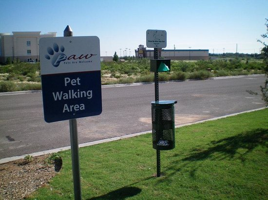 Candlewood Suites Fort Stockton : Pets Are Always Welcome at Candlewood Suites