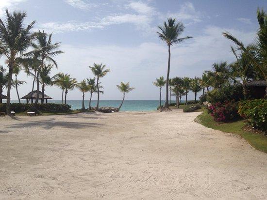 Sanctuary Cap Cana by AlSol: Paradise
