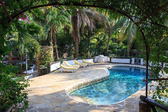 Scorpio Villas: Una delle piscine