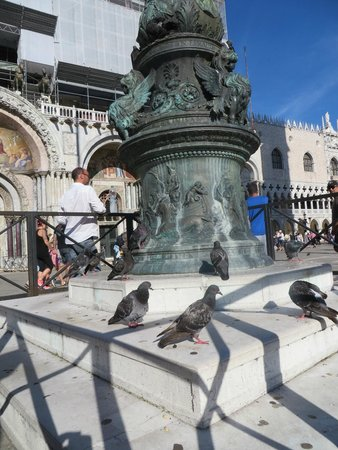 Piazza San Marco (Place St Marc) : Pigeons sunbathing in the square