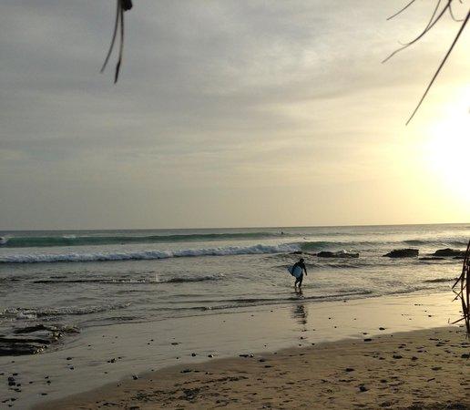 Buena Vista Surf Club: My husband said surfing was excellent