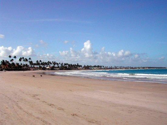 Pousada Som das Ondas: la plage 2
