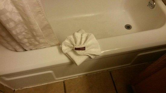 The L Motel Flagstaff : La vasca con doccia