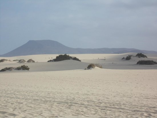 Corralejo Dunes: Davanti c'è il mare