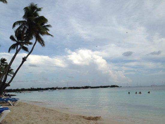 Dreams La Romana : Perfect beach