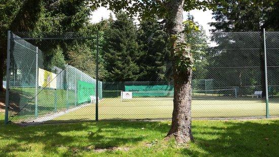 Vier Jahreszeiten am Schluchsee: Tennis extérieur