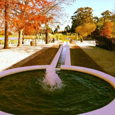 Warwick Wine Estate: Water features