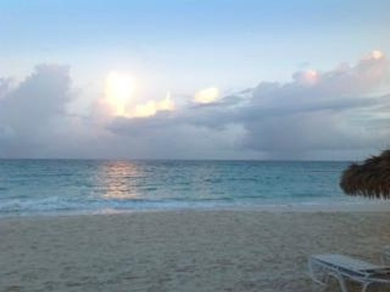 Bougainvillea Barbados: Beach at sunset
