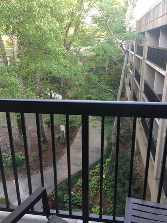 """Wyndham Peachtree City Hotel and Conference Center: My higher prices """"pool view"""" from room 461. Ridiculous. Should have demanded a refund for the up"""