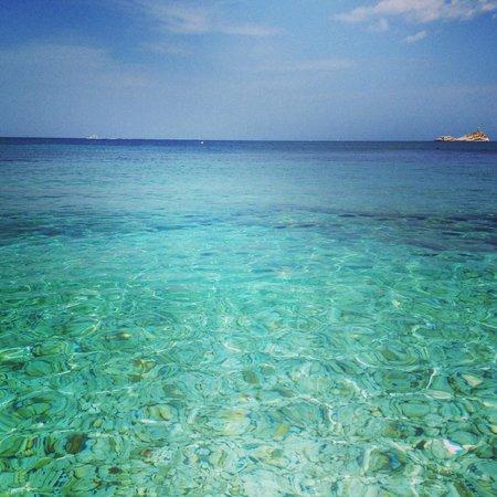 Spiaggia delle Ghiaie : Sea le ghiaie - Elba 2014