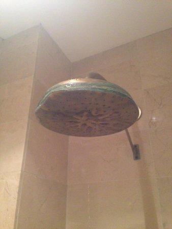 Las Casas de la Juderia: A shower head