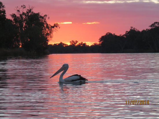Berri Australia  city photo : ... Loch Luna Game Reserve Bild von Canoe Adventures Riverland, Berri