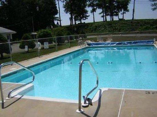 Dutch Treat Motel: Pool