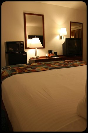 Best Western Colorado River Inn: Habitación