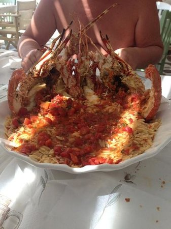 Agia Anna, Yunanistan: Lobster orzo to die for