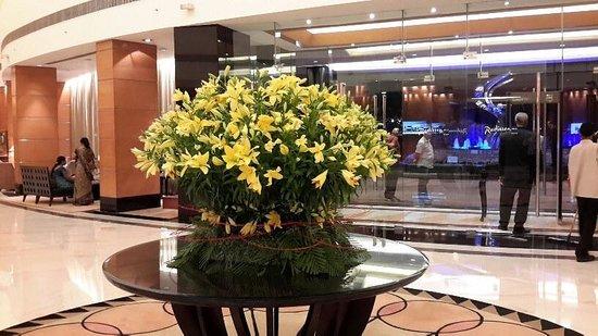 Radisson Blu Plaza Delhi Airport: Lobby