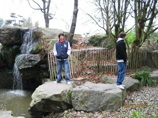 Jardin japonais de nantes photo de jardin japonais nantes tripadvisor for Jardin japonais nantes